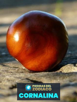 Piedra del Zodiaco Cornalina - Snappygoat.com